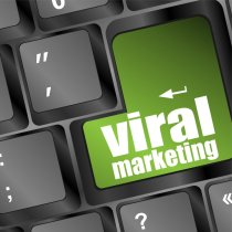 Adlandpro Viral Marketing